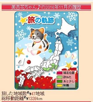美杏花11月の履歴.jpg